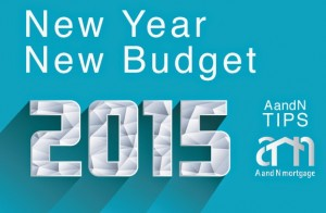 NEw Year Budget - ANMTg tips